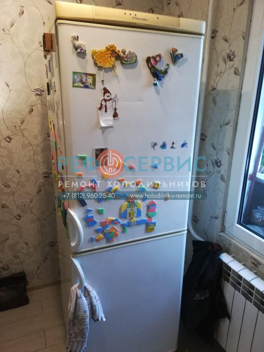 Замена термостата в холодильнике Electrolux ER 3318 B